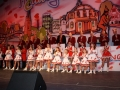alenfest 2012 11